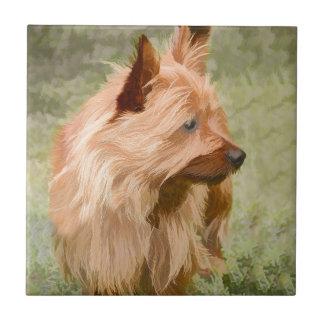Cairn Terrier - Painting Ceramic Tile