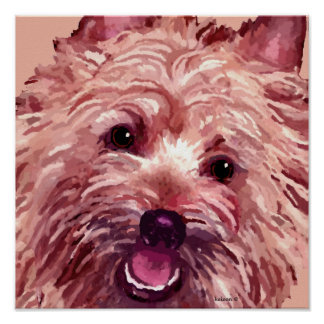 Cairn Terrier Painting on Posters