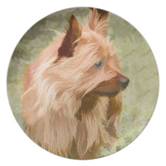 Cairn Terrier - Painting Plate