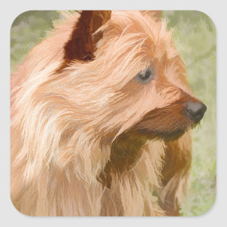 Cairn Terrier - Painting Square Sticker