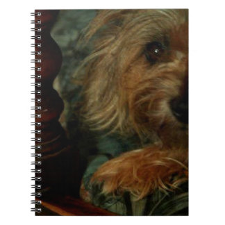 Cairn Terrier Spiral Note Book