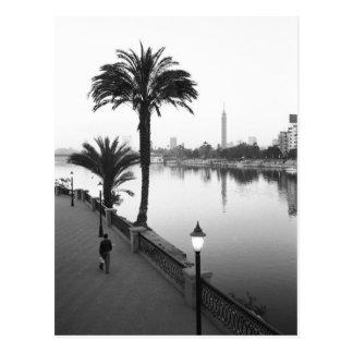 Cairo Egypt, Along the Nile River Postcard