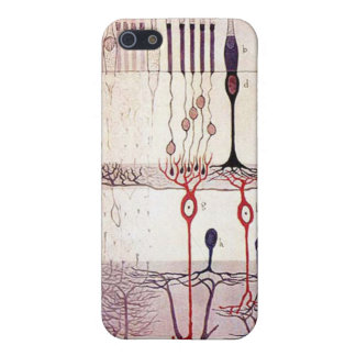 cajal retina iphone 4G case iPhone 5 Case