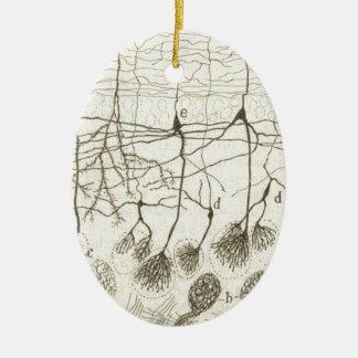 Cajal's Neurons 8 Ceramic Ornament