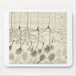 Cajal's Neurons 8 Mouse Pad