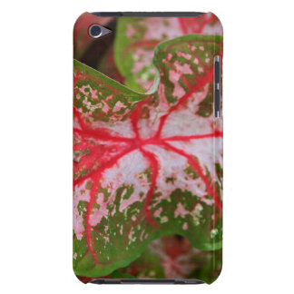 Caladium Case-Mate iPod Touch Barely There Case Barely There iPod Case