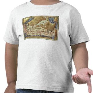 Caladrius bird, reputed to foretell shirt
