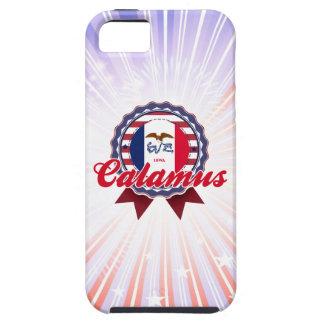 Calamus IA iPhone 5 Covers