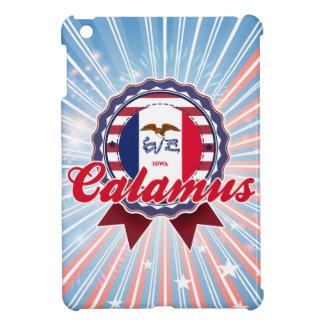 Calamus IA iPad Mini Case