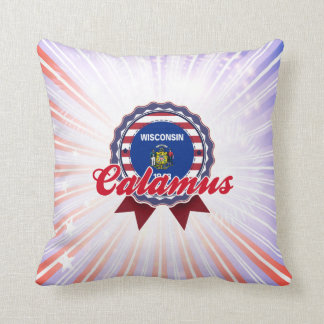 Calamus WI Pillows