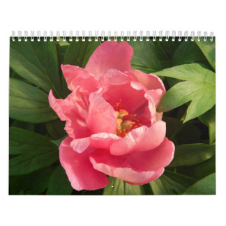 Calendario con fotografía de flores en color wall calendars