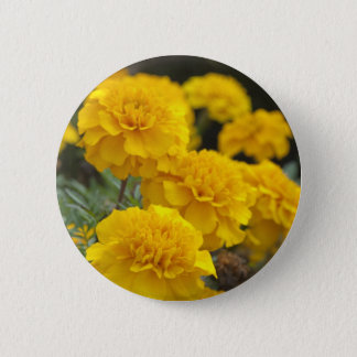 Calendula 6 Cm Round Badge