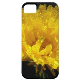 Calendula Gold iPhone 5 Cover