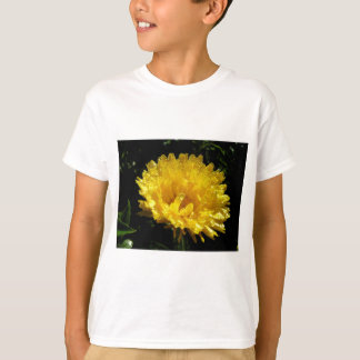 Calendula Gold T-Shirt