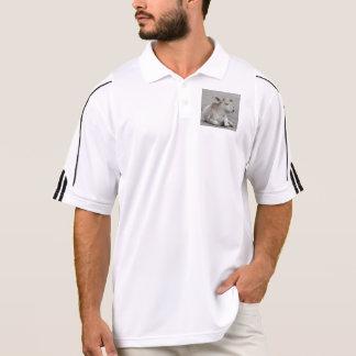 calf polo shirts