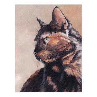 Calico American Shorthair Cat Postcard