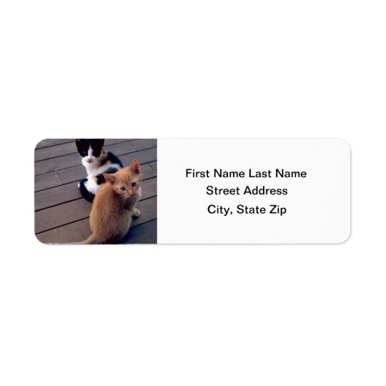 Calico and Orange Kittens Return Address Label