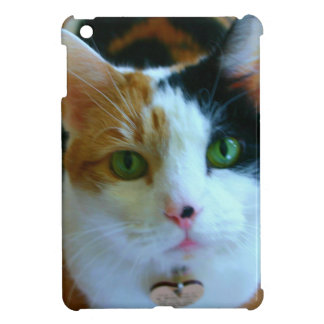 Calico Cat Cover For The iPad Mini