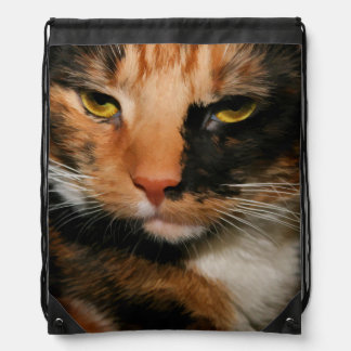 CALICO CAT DRAWSTRING BACKPACK