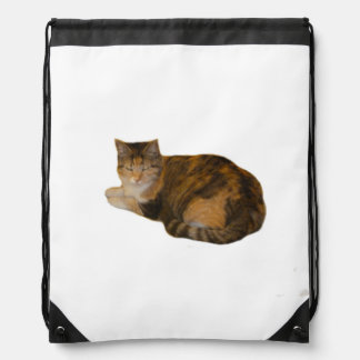 Calico Cat Drawstring Bag