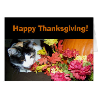 Calico Cat Happy Thanksgiving Card