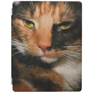 CALICO CAT IPAD AIR CASE iPad COVER