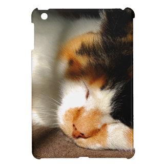 Calico Cat Sunning iPad Mini Cases