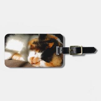 Calico Cat Sunning Luggage Tag