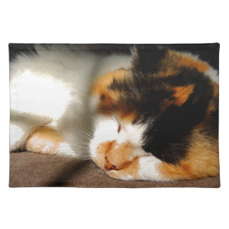 Calico Cat Sunning Placemat