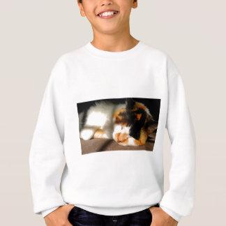 Calico Cat Sunning Sweatshirt