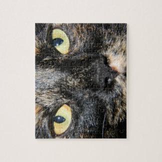 Calico Cat's Eyes Puzzle