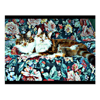 Calico Cats on Flower Chair Postcard | Animal Art