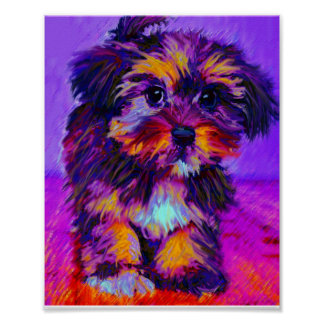 calico dog poster