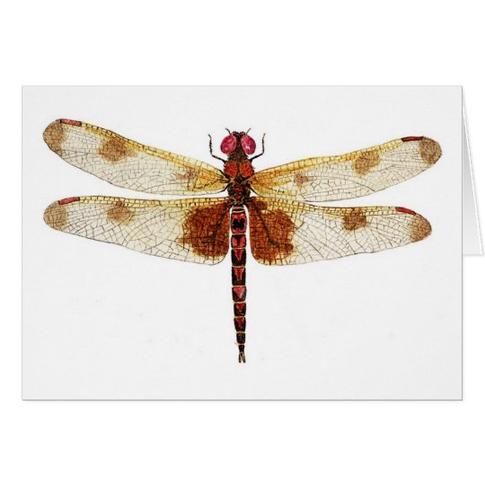Calico Dragonfly Card