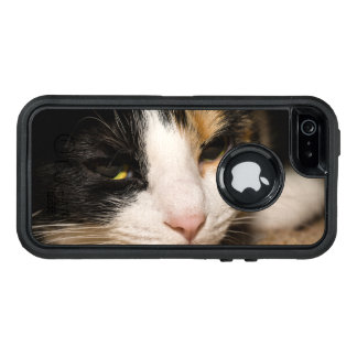 Calico Face OtterBox iPhone 5/5s/SE Case