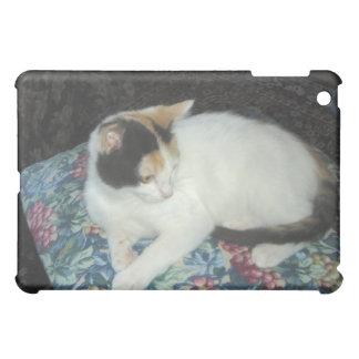 Calico Kitten iPad Mini Cover
