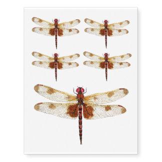 Calico Pennant Dragonfly Temporary Tatoo