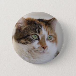Calico tabby cat face 6 cm round badge