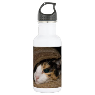Calico Taco 532 Ml Water Bottle