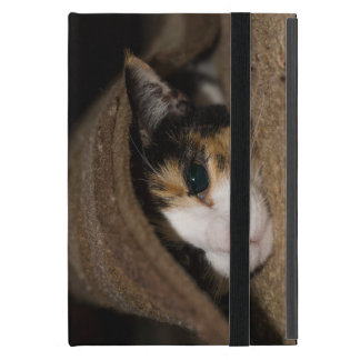Calico Taco Case For iPad Mini