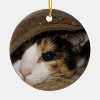 Calico Taco Ceramic Ornament