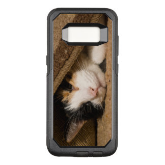 Calico Under The Rug OtterBox Commuter Samsung Galaxy S8 Case