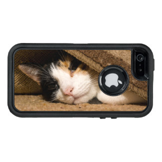 Calico Under The Rug OtterBox iPhone 5/5s/SE Case