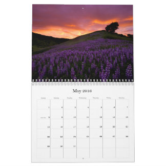 California - 2016 Calendar