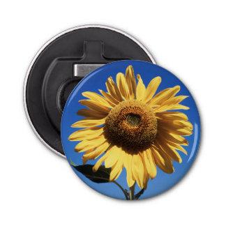 California, A Mammoth Sunflower (Helianthus) 3