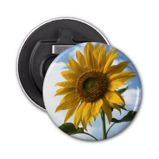 California, A Mammoth Sunflower (Helianthus) 4