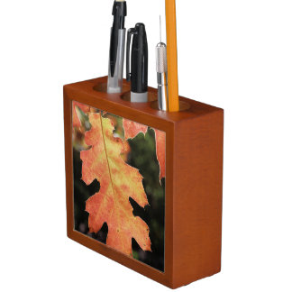 California, An autumn colored Oak leaf Desk Organisers