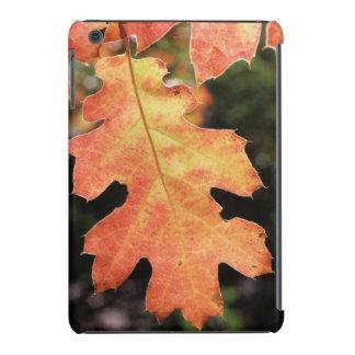 California, An autumn colored Oak leaf iPad Mini Cases