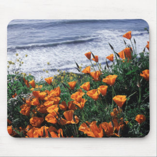 California, Big Sur Coast, California Poppy Mouse Pad