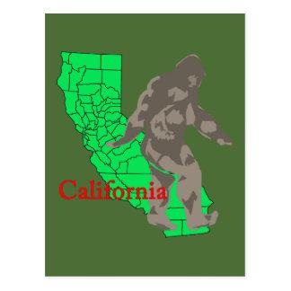 California bigfoot postcard